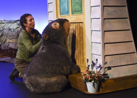 Why your tribe needs to see the Diary of a Wombat theatre show