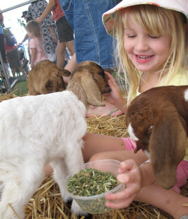 What's On Sydney Easter