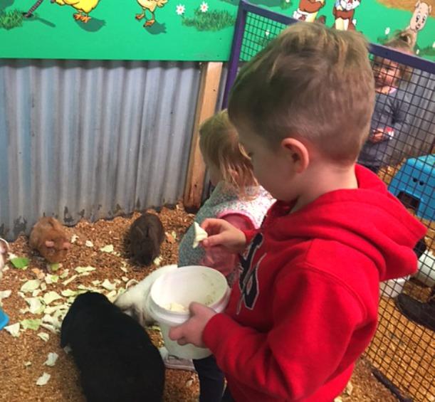 Swan Valley Animal Farm 1