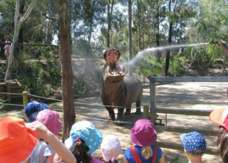 Taronga Zoo school holidays sydney