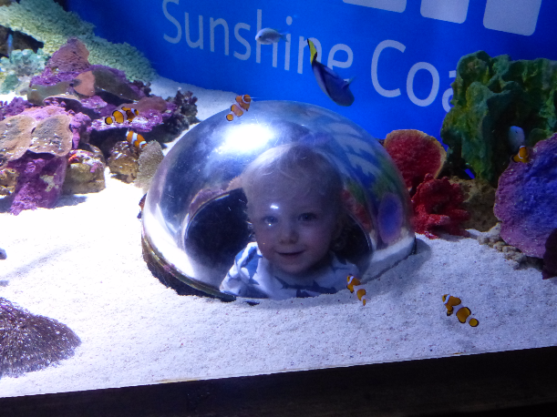 SeaLife Aquarium Mooloolaba