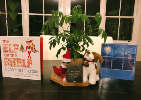 Fun Elf on the Shelf hacks for the tribe