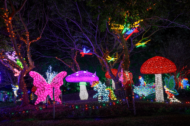 Christmas Lights Spectacular Hunter Valley