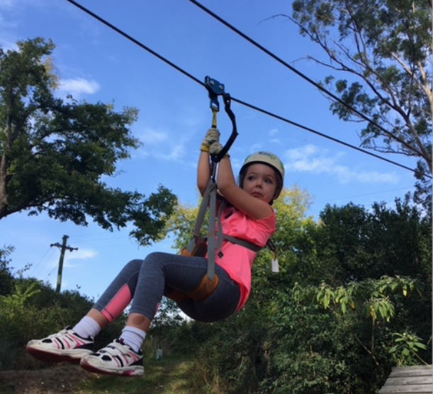 Tree Top Adventures Yarramundi