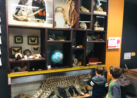 Museum Playtime is a truckload of fun