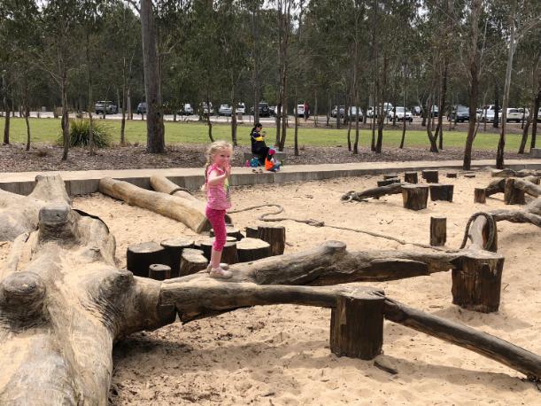 Lizard Log Park