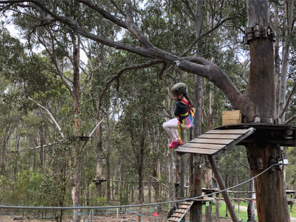 Tree Top Adventure Park