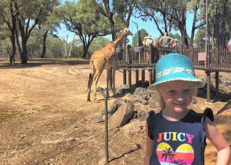 Take the tribe to Taronga Western Plains Zoo