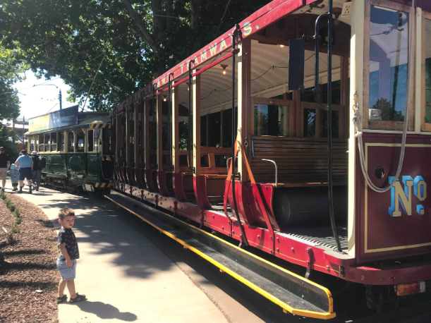 Bendigo Trams
