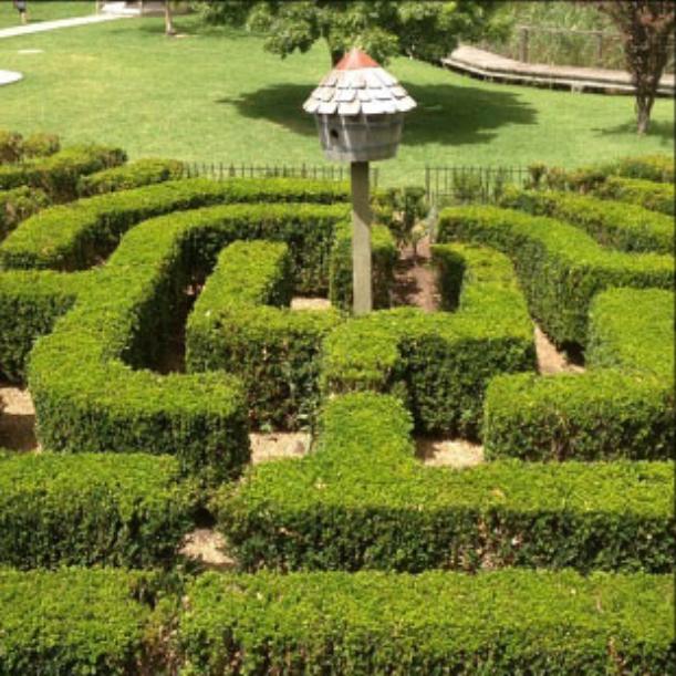 Boneo Maze