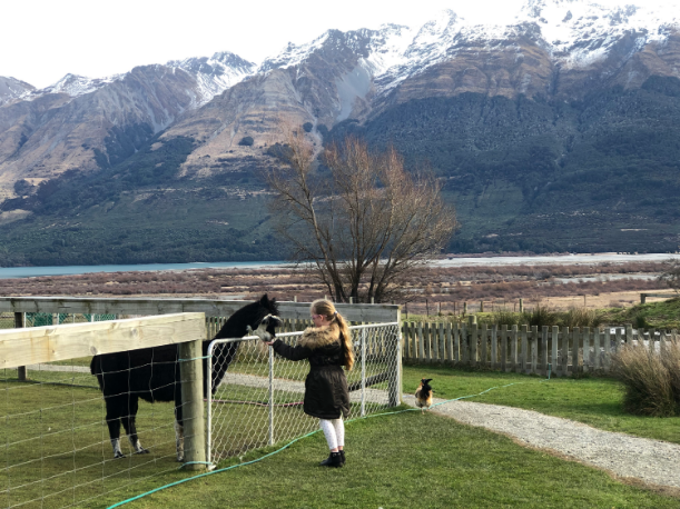 Glenorchy Animal Experience
