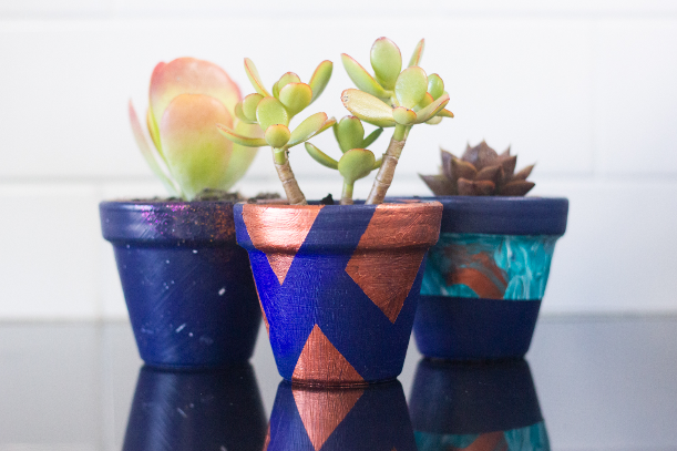DIY pot plants