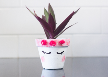 DIY pot plants for stay at home fun